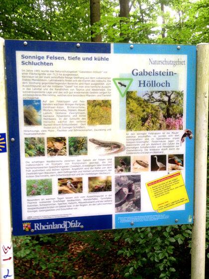 Naturschutzgebiet Gabelstein