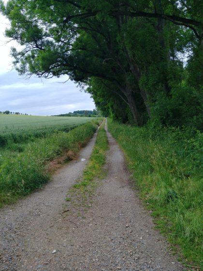 Ruhiges Wandern