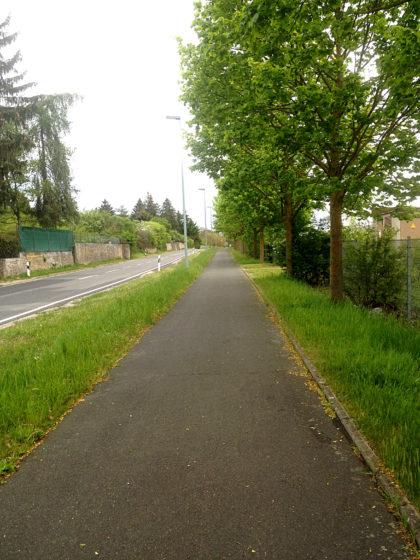 Das letzte Stück bis Kitzingen führt an der Landstraße entlang