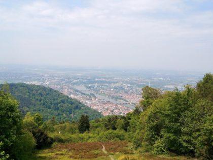 Blick vom knapp 570 Meter hohen Königstuhl auf Heidelberg