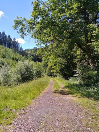 Schönes Wandern am Waldrand entlang