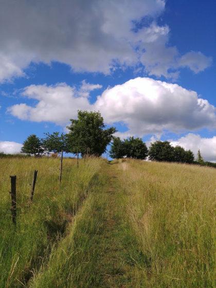 Wir haben einen Bogen geschlagen und befinden uns nun exakt auf der gegenüberliegnden Seite von Dörnberg