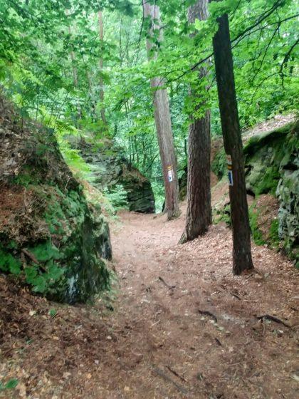 Erste Felsen tauchen am Wegrand auf