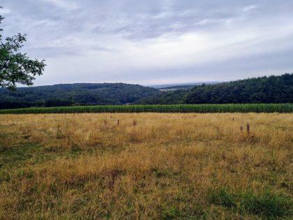Noch so ein Fernblick über Wiesen und Hügel