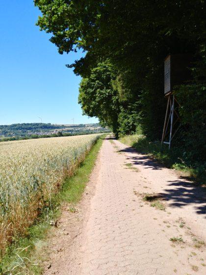 Das Dorf da hinten ist Wehingen