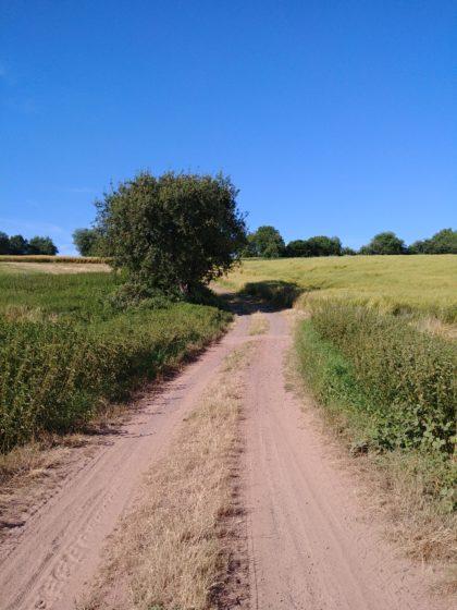 Stille Wege