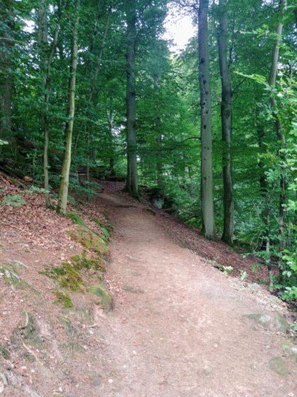 Gute Wanderbedingungen: Warm und frisch