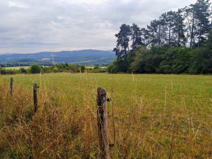 Blicke über Wiesen und Weiden