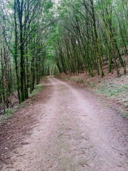 Mehrere Kilometer tischebenes Gelände