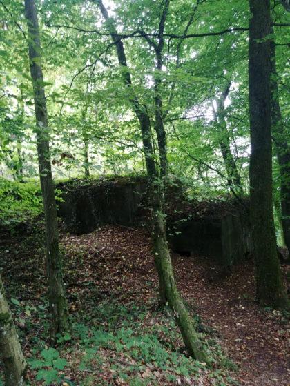 Einer der rund 20 noch erhaltenen Westwallbunker in der Gegend von Beckingen
