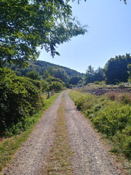 Der Weg verläuft bis Lohnweiler entlang der Bahntrasse
