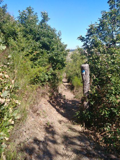 Ein Hauch von andalusischer Sierra