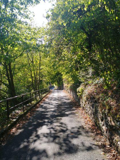 Auf dem Weg hinunter nach Wolfstein