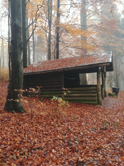 Die Weidenberghütte