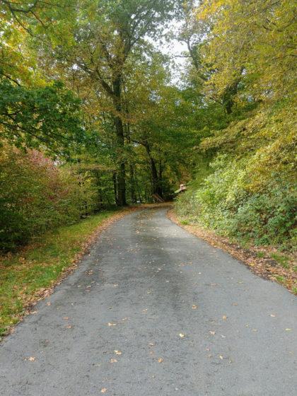 Beginnendes Herbstleuchten