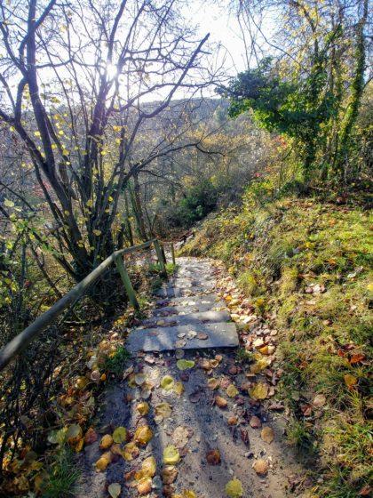 Mitten ins Herz des Herbstes hinein