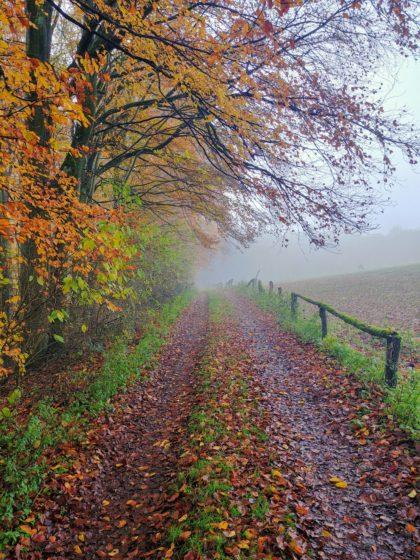 Der Herbst macht aus dieser Wanderung ein besonderes Erlebnis
