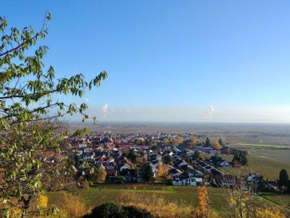 Blick von der Wachtenburg auf Wachenheim