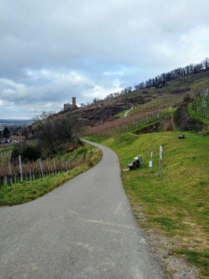 Blick zurück auf die Strahlenburg