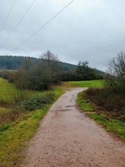 An dieser Stelle zweigt der Weg links ab