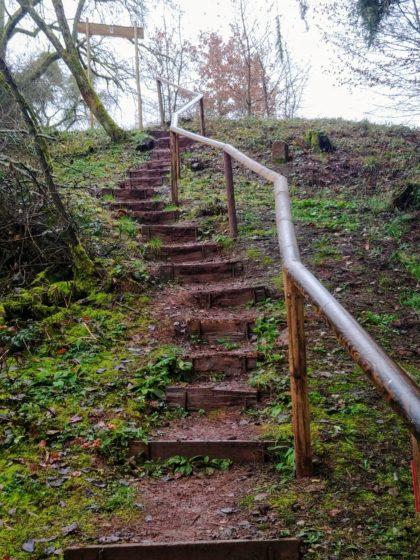 Noch ganz neues Geländer - kein Wunder, der Pfad ist ja auch erst 2018 ins Leben gerufen worden