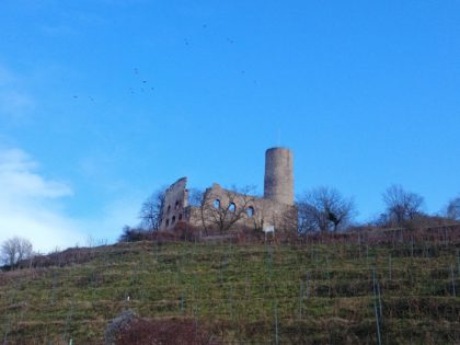 Unmittelbar unterhalb der Strahelnburg, die im 13. Jahrhundert entstanden ist