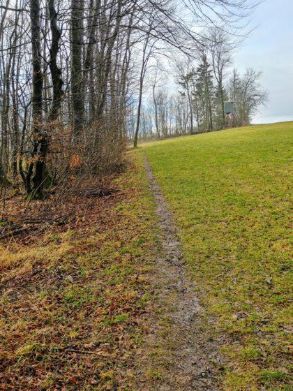 An manchen Stellen muss man auf eine Wiese oder einen breiten Weg ausweichen, weil der eigentliche Wanderpfad wegen des Schlammes zu gefährlich ist