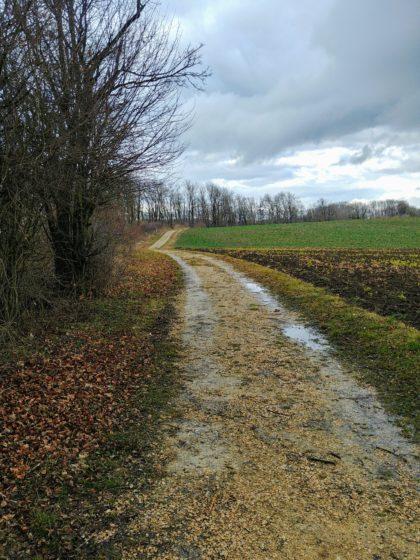 Wieder so eine Stelle, an der wir vorsichtshalber auf diesen breiten Weg ausweichen, denn der eigentliche Wanderpfad wäre lebensgefährlich