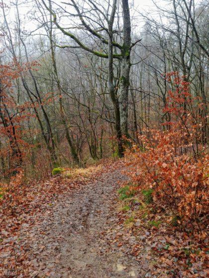 Der schlammige Boden verhindert ein zügiges Gehen