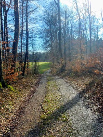 Wiesenpfade und kurze Waldabschnitte wechseln jetzt einander ab