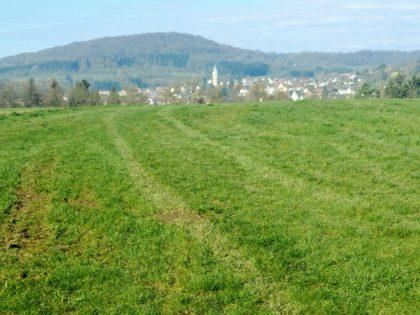 Zwei Kilometer unterwegs - auf der Höhe von Steinbach