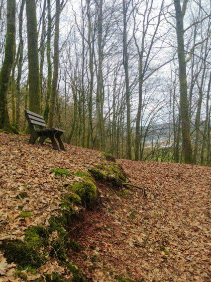 Ich befinde mich jetzt ungefähr auf der Höhe von Primstal, dem eigentlichen Startpunkt des Panoramapfades