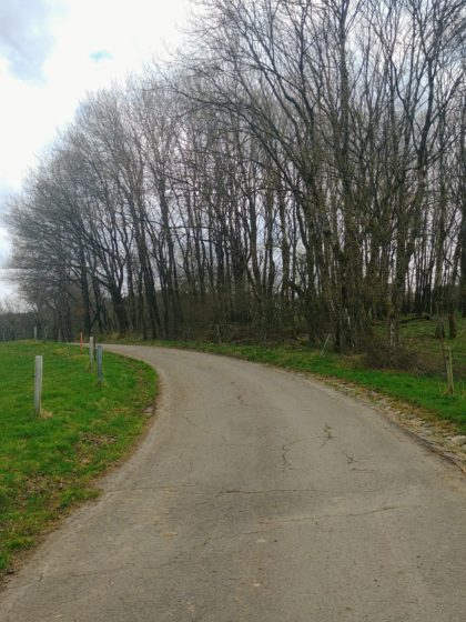 Asphaltpassage zwischen Wiesen und Weiden
