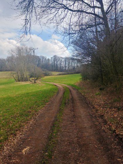 Anfangs breite Spazierpfade