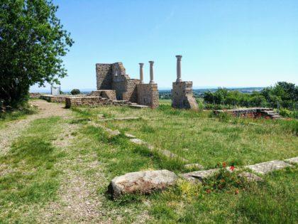 Ein paar Kilometer von Kallstadt entfernt wurde ein antikes römisches Weingut ausgegraben
