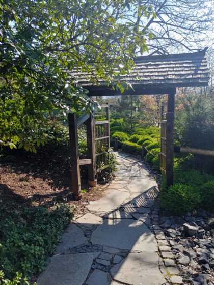 Finkenrech - Asiatischer Garten