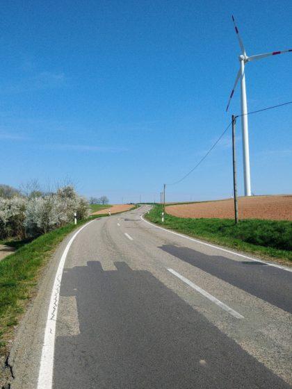 Landstraße zwischen Dirmingen und Tholey