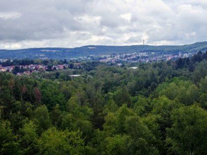 Fernblick mit Wald und Hügeln