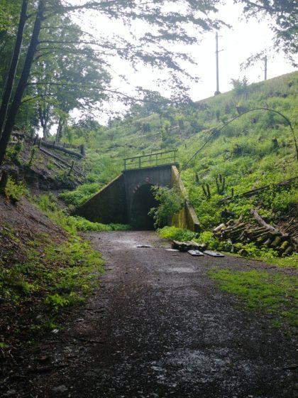 ... bis zu diesem alten Tunnel