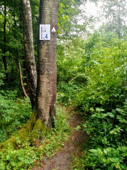 Kilometer vier des Hartfüßlerweges