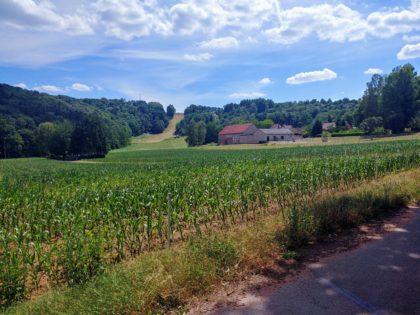 Wunderbarer Blick über die Felder