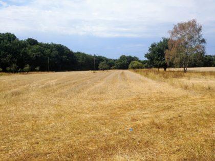 ... führt an abgeernteten Feldern vorüber ...