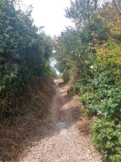 Einziger kleiner Hohlweg der heutigen Etappe - die Hohlwege sind bei früheren Etappen auf dem Rheinterrassenweg sehr häufig anzutreffen