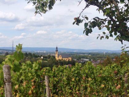 Blick auf St. Gereon in Nackenheim