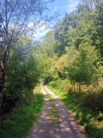 Für ein paar Kilometer ist der Hartfüßlerweg identisch mit dem Brunnenpfad