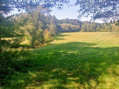 Die Oster, eingebettet zwischen sattgrünen Wiesen