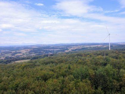 Ausblick vom Höcherbergturm II