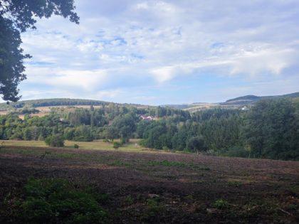 Hinter Fürth - das ist ungefähr die Landschaft, die mich jetzt bis zum Ende der Wanderung begleitet
