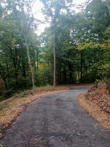 Hinter dieser Serpentine befindet sich der Parkplatz des Naturschutzgebietes