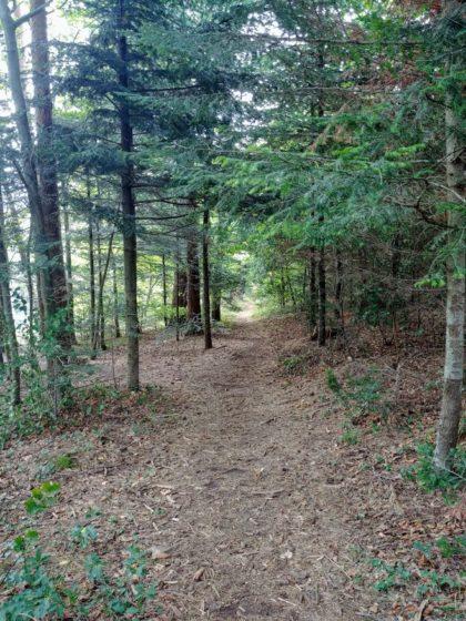 Entspanntes Wandern